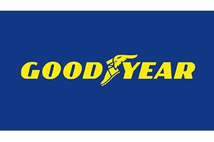 Ganador Premios Calidad y Servicio de la Posventa de Automoción 2019 Marca Que Sorprende | Goodyear Neumáticos