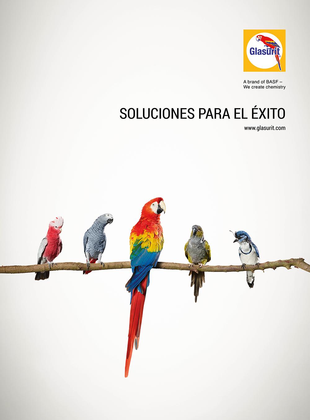 Premio Calidad y Servicio 2019 Color Glasurit